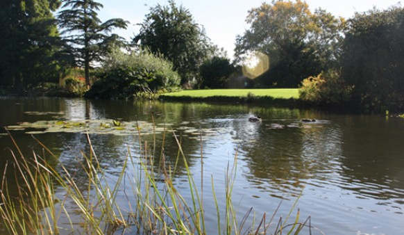 Horticulture Visit to Hyde Hall
